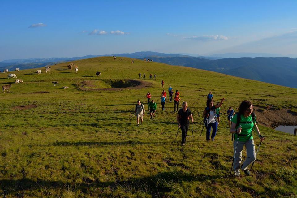 Reptes excursionistes ALT URGELL 2020: Repte dels Cims (10. SALÒRIA)